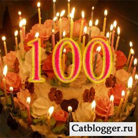 100-ya-statya-bloga-lyubitelej-kotov-i-koshek