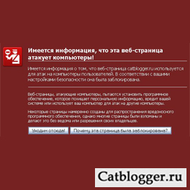 google-obidelsya-na-moj-blog-lyubitelej-kotov-i-koshek