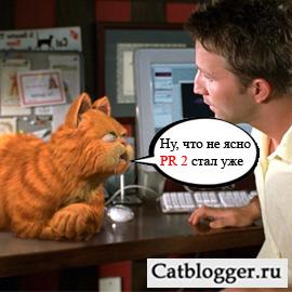 blog-lyubitelej-kotov-i-koshek-poluchaet-pr-2
