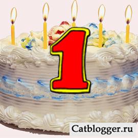 blog-lyubitelej-kotov-i-koshek-prazdnuet-den-rozhdeniya