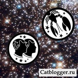 goroskop-i-moj-domashnij-kot-chast-2
