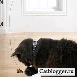 Танцующий кот новая игрушка