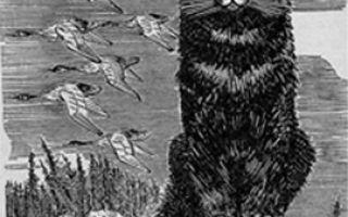 Злой кот Баюн